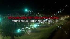 Phóng sự sử dụng đèn TKNL trong nông nghiệp, nông thôn