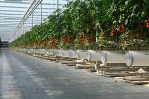Công nghệ mới tiết kiệm nhiên liệu trong sản xuất nông nghiệp