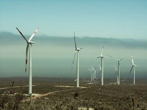 Indonesia hướng tới phát triển điện gió