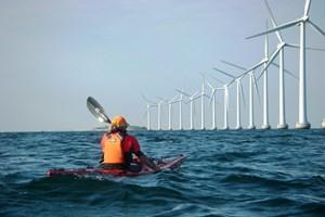 Bạc Liêu tiên phong khai thác nguồn năng lượng điện gió
