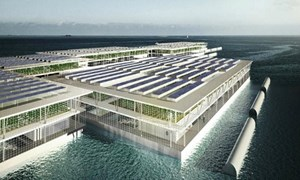 Trang trại nổi trồng rau bằng nước biển