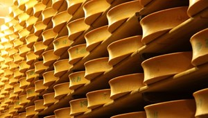 French power station generates electricity for 1,500 homes from cheese