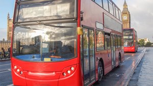 More than 50% of all buses were green in 2015
