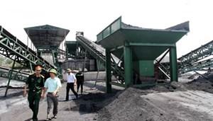 Tập đoàn Công nghiệp Than - Khoáng sản nỗ lực vì môi trường xanh