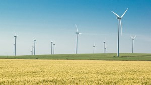 Wind energy 'will be cheaper than gas by 2020'
