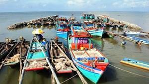 Cà Mau phát triển năng lượng sạch ở sáu huyện ven biển