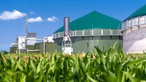 Bộ Năng lượng và Biến đổi khí hậu Anh đề xuất giảm trợ cấp cho khí gas sinh học