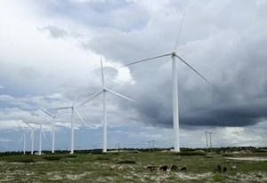 EU hợp tác phát triển năng lượng sạch