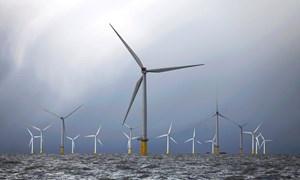 EU cần hậu thuẫn các dự án năng lượng gió ngoài khơi