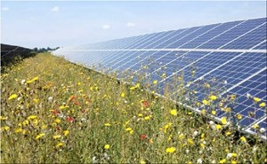 Đầu tư vào năng lượng tái tạo giảm mạnh sau kỷ lục năm 2015