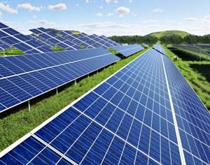 Toshiba sẽ xây công viên quang điện 33,5 MW cho Thai Gunkul ở Nhật Bản
