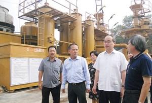 TPHCM có thể đạt 100 MW năng lượng tái tạo vào năm 2020