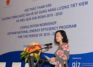 Tham vấn Chương trình VNEEP giai đoạn 2019 -2030