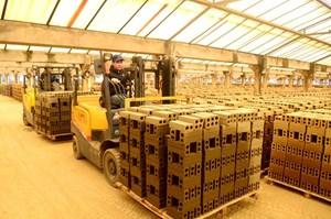Quản lý năng lượng hiệu quả góp phần giảm phát thải trong lĩnh vực sản xuất vật liệu xây dựng