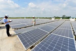 """""""Làn sóng"""" đầu tư vào năng lượng tái tạo"""