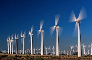 CCG Group đầu tư điện gió tại Trà Vinh