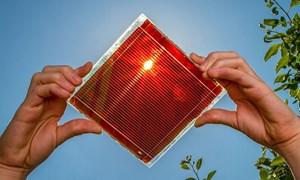 Thiết kế đảo ngược giúp tăng 22,3% hiệu suất pin mặt trời