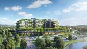 Giảm tiêu thụ năng lượng trong các tòa nhà để ứng phó biến đổi khí hậu