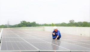 Tập đoàn Phenikaa: Giảm phát thải gần 200 tấn CO2 nhờ năng lượng tái tạo