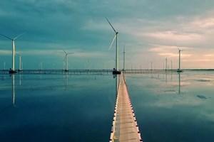 Phát triển năng lượng: Kiên quyết loại bỏ bao cấp, độc quyền
