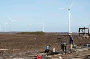 Doanh nghiệp cần sự cải cách cơ chế đầu tư năng lượng tái tạo