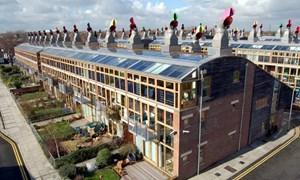 """Ngôi làng """"không carbon"""" thân thiện với môi trường"""