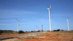 Đẩy mạnh nghiên cứu, hợp tác, phát triển năng lượng tái tạo ngoài khơi
