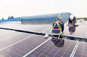 Năng lượng tái tạo - Hướng đầu tư hiệu quả cho doanh nghiệp phát triển bền vững
