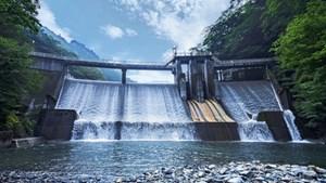 Nhật Bản đặt mục tiêu 50% năng lượng tái tạo vào năm 2050