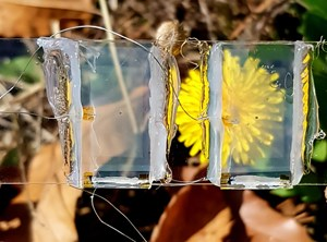 Invisible Solar Panels: How Tomorrow's Windows Will Generate Electricity