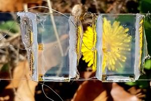 Nghiên cứu mở ra tiềm năng tiết kiệm năng lượng với cửa sổ năng lượng mặt trời