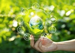 Vai trò của doanh nghiệp và các địa phương trong việc thúc đẩy sử dụng năng lượng tiết kiệm, hiệu quả từ góc nhìn của cơ quan quản lý nhà nước